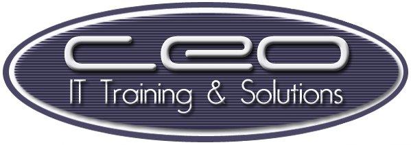 CEO Training